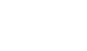 Logo ANV Nevers-blanc-trans