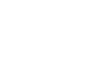 Logo Alternatiba Nevers blanc-02